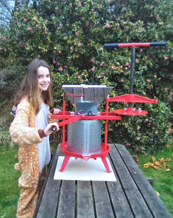 Cross beam fruit press and apple crusher combo - size